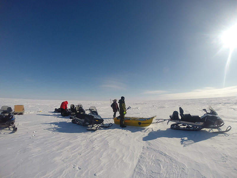 group of snowmobiles and people on snowy plain